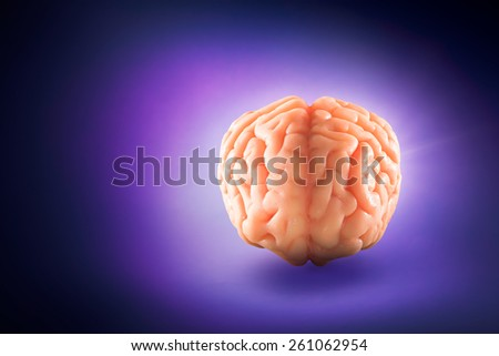 Human brain floating on a purple background - stock photo