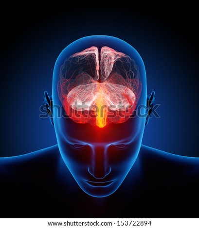 Human brain illustrated with millions of small nerves - Conceptual 3d render - stock photo