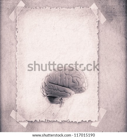 Human brain - illustration in frame - stock photo