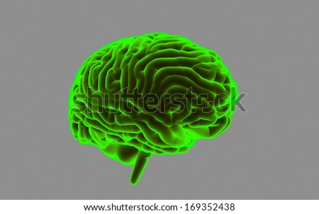 Human Brain isolated on dark background - stock photo