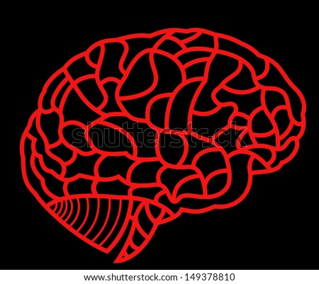 human brain model - stock photo