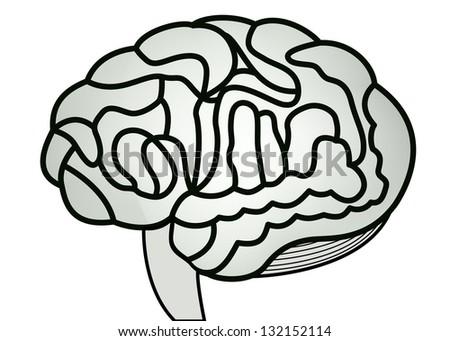 human brain model. jpg illustration - stock photo