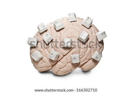 Human brain model with computer keys placed on it  - stock photo