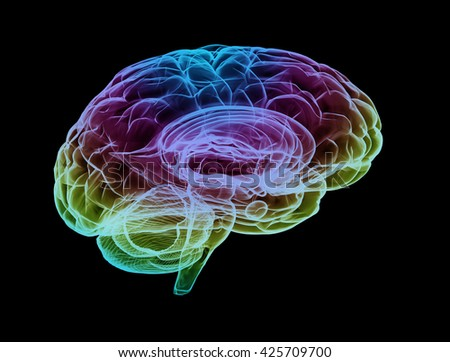 Human brain multi color. 3D illustration - stock photo