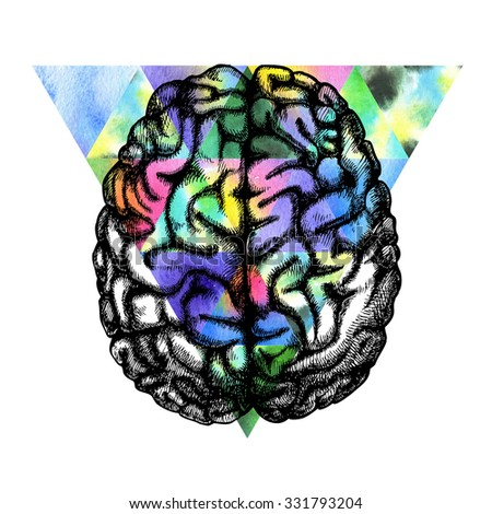 Human brain. Raster hand drawn illustration.