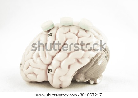 human brain with vintage style