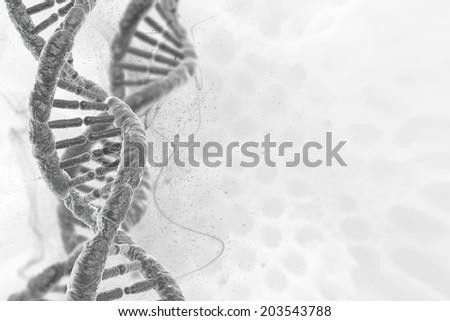 human DNA - stock photo