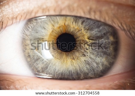 Human eye - stock photo