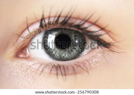 Human eye close-up - stock photo