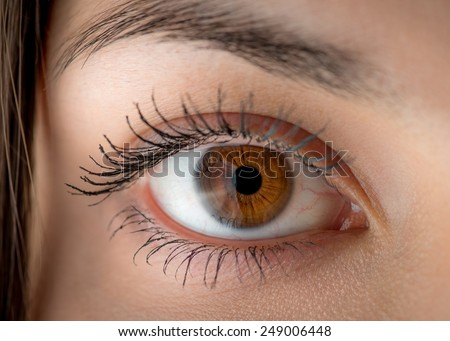 Human eye with reflection. Macro shot with shallow depth of field. - stock photo