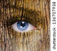 human face with an open eye covered in a tree bark texture - stock photo