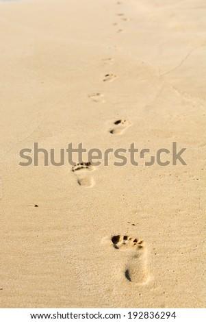 Human footsteps on atlantic fine beach sand - stock photo