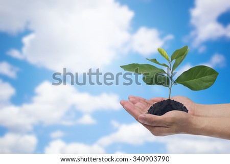 human gesture holding a little plants against blurred nature blue sky with clouds backdrop:man hand with a little tree of healthy symbolic concept:happy long life:good health concept. - stock photo