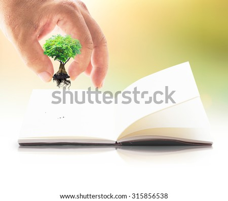 Human hand add growing tree or plant in the shape heart into the book over blurred sunset background. Natural energy concept. Ecology, World Environment Day concept.