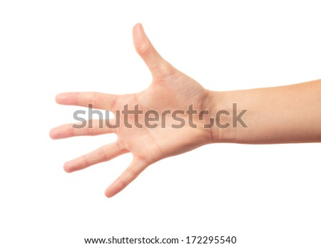 Human hand five fingers - stock photo