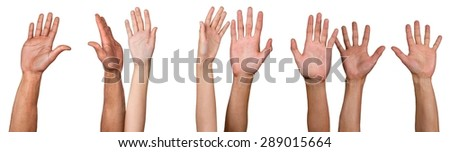 Human Hand, Hand Raised, Volunteer.