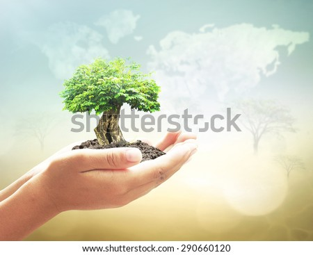 Human hand hold big plant soil on blur abstract beauty forest. Bio Ecology CSR New Life Arbor Spring Kidney Idea Assured Food Trust Healthy Brain Enrich Wisdom Save System Critics Mission Media Style. - stock photo