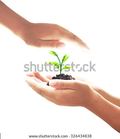 Human hand holding a small plant with soil with isolated on white background. Ecology, World Environment Day, Ecological City, Alternative Energy, Tree of Knowledge concept. - stock photo