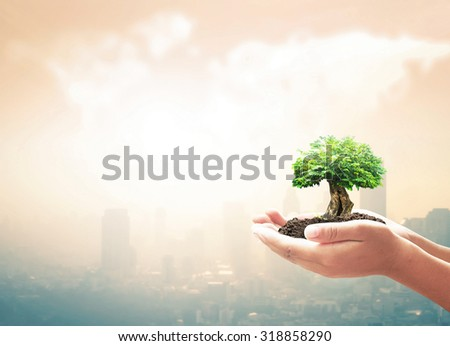 Human hand holding big plant with soil on blurred warm city sunrise over world map of clouds background. Ecology concept. World Environment Day concept. Investment concept. - stock photo