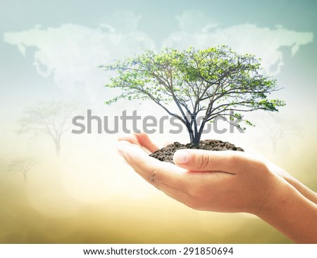 Human hand holding big plant with soil on blurred world map of clouds over sea, ocean, green forest, desert over colorful sunset background. Ecology, World Environment, Tree of Knowledge concept. - stock photo
