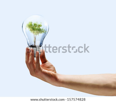 Human hand holding bulb with green tree inside - stock photo