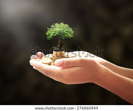 Human hand holding golden coins with medium plant or big tree. Money coin concept. - stock photo