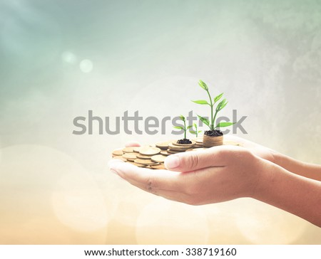 Human hand holding golden coins with young plant over blurred beautiful city sunset background. Seedling in coins Money LIT Investment Saving Banking Insurance Agent Fund ROI CSR Finance Time concept - stock photo