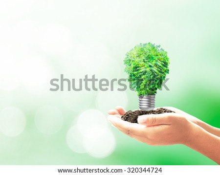 Human hand holding light bulb of tree on bokeh background. Ecology, Ecofriendly, Eco friendly, Go green, Environmentally, Alternative Energy, Electric, Saving, Lamp, Power, Earth Hour Watt concept - stock photo