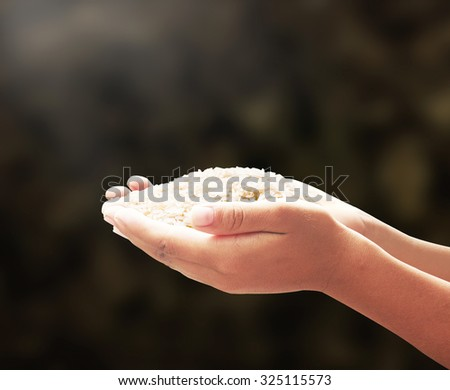 Human hand holding rice grain on dark room background. World Food Day Concept.