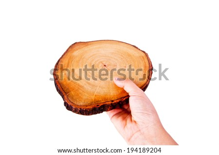 Human Hand Holding Wooden Cut Isolated on white background / For Concept of Carpentry, Wild, Nature, or Sign To Put Text Here, Give Take. - stock photo