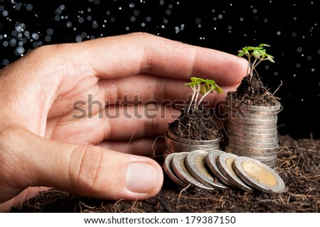 Human hand sheltering coins and young plant - stock photo