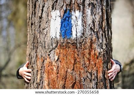Human hands embracing a tree marked with a blue stripe hiking trail sign - stock photo