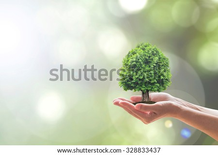 grow trees save environment essay Saving trees, planting trees, about to protect the earth by nipul parikh | published monday, may 14 ways to save the environment save the trees slogans saving forests save paper save.