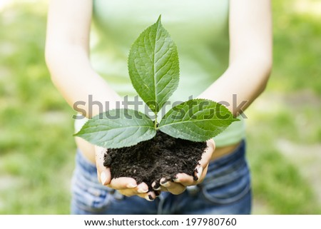 Human hands holding and support small plant to grow up.
