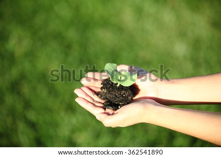Human hands holding green small plant new life concept. with wonderful swirly bokeh effect by Petzval lens. copy-space - stock photo