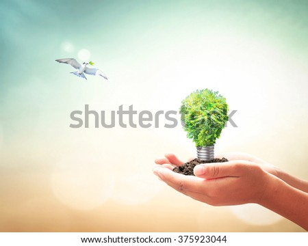 Human hands holding lightbulb of tree & bird flying over blurred nature background. World Thinking Day Go Green Saving Technology CSR Future International Creativity and Innovation Power Earth concept - stock photo