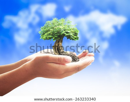 Human hands holding medium plant or big tree over blurred world map of clouds background. Ecology concept. - stock photo