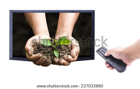 Human hands holding remote and monitor display human hands holding young plant over nature background isolate on white. Ecology concept. nature frame for entering text over the actual location. - stock photo