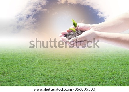 Human hands holding small plant over blurred house on rainy with nature background. Ecology concept.