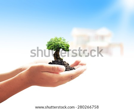 Human hands holding young plant over blurred house on nature background. Ecology concept. - stock photo