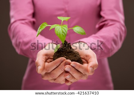 Human hands holding young spring sprout - closeup shot - stock photo