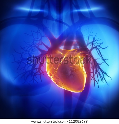 Human heart glowing in chest     **** Also as footage available in my portfolio