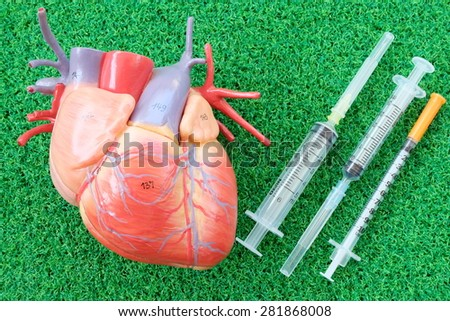 human heart model and syringe on green grass background - stock photo