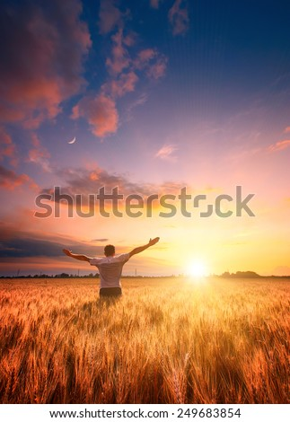 Human in a wheat field enjoy bright colorful sunset