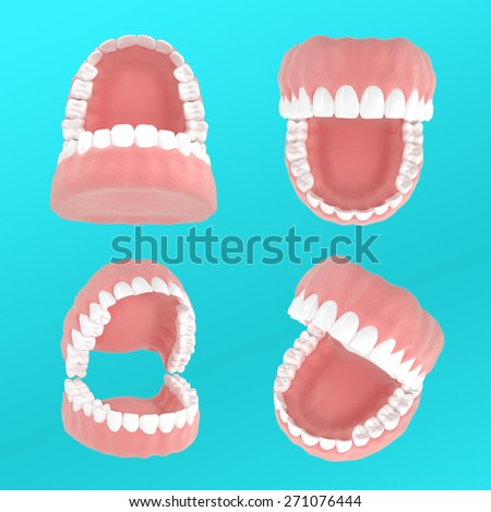 Human jaw. 4 types of positions - stock photo