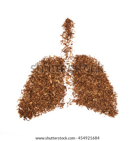 Human lung made from tobacco isolated on white background. - stock photo