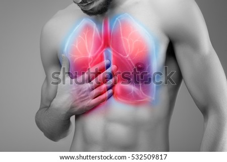 lungs stock images, royalty-free images & vectors | shutterstock, Cephalic Vein
