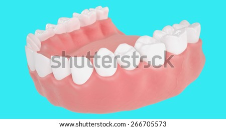 human mandible . 3d detailed illustrations on a blue background