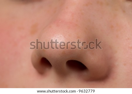 Human nose macro shot - stock photo