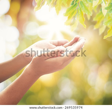 Human open empty hands with palms up over blurred sunset background. Forgiveness Mercy Humble Redeemer Amen Morning Pray Hope Way Hosanna Give Trust Love Environment Healthcare Health Care concept. - stock photo